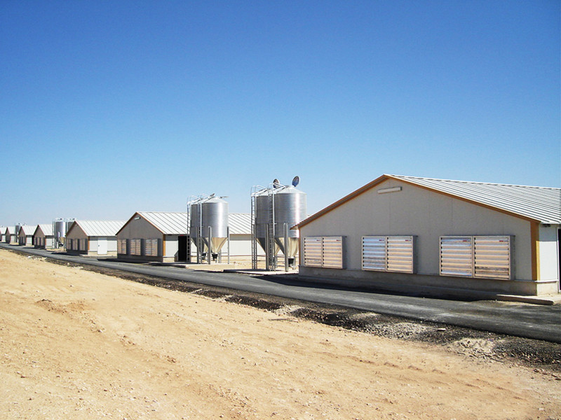 Qatar 1457.9m2 Poultry House